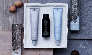 Essential Brands: IGORA Ashy Cedar & Earthy Clay